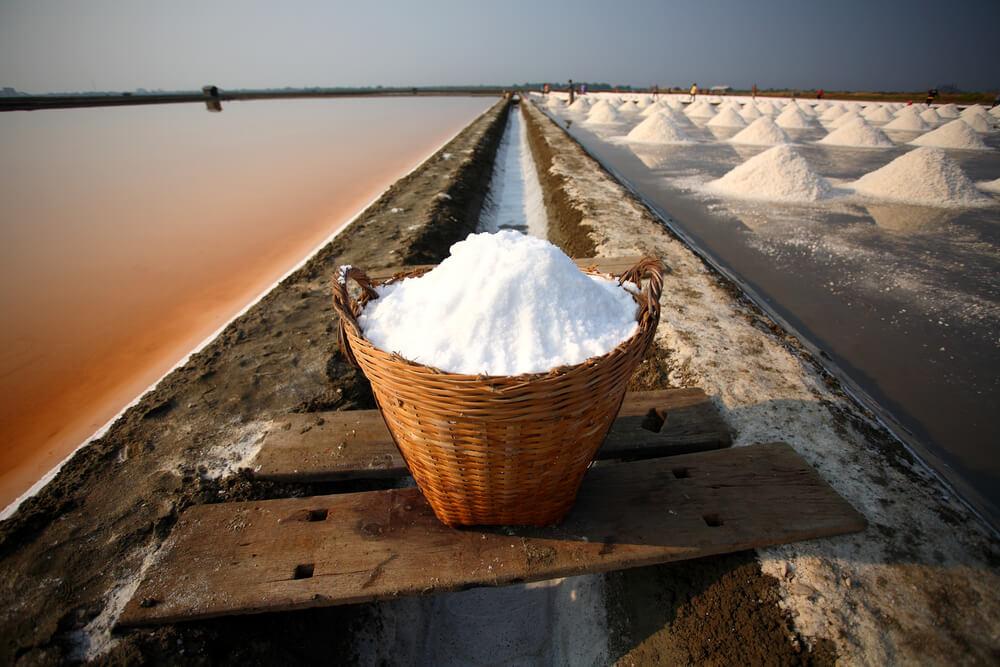 Sea salt harvesting with salt in bucket