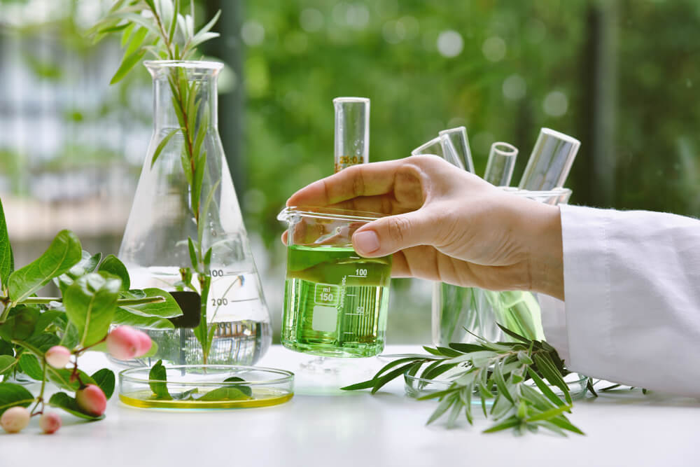 Test tubes with botanical extracts