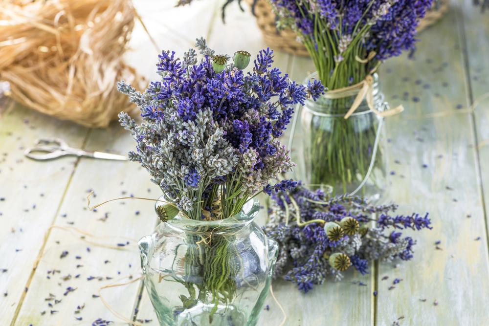 Small lavender bouquets